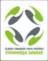 Podokręg Zabrze Śląskiego Związku Piłki Nożnej